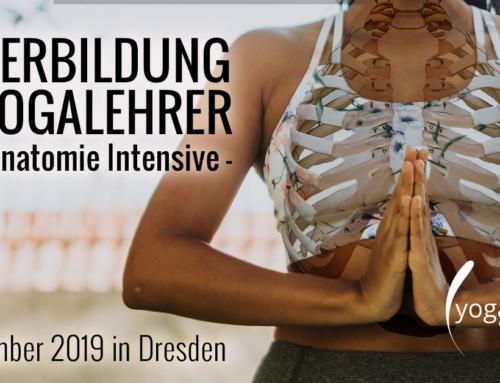 Weiterbildung für Yogalehrer 2019 – 250h Anatomie Intensive